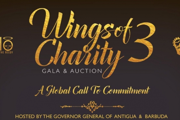Halo Wings of Charity Auction Gala 3